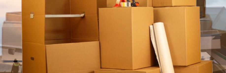 Looking For Packers And Movers Noida